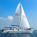 um-cruise-aristcat