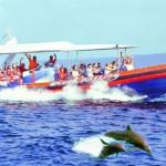 um-cruise-oceanrafting