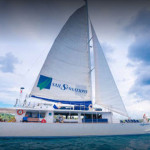 um-cruise-sail-daylight