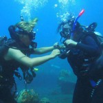 ブルーシーズンバリ 体験ダイビング