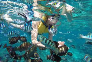 レンボンガン島+ペニダ島+チェニガン島 シュノーケリング三昧+マングローブツアー+島内巡り