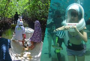 マングローブ林とお魚とサンゴ礁の世界を海中散歩「マリンウォーク・海中写真1枚付き」ツアー