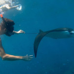 um-manta-snorkel